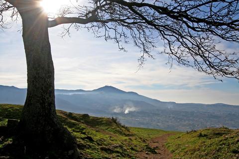 Nemora, Castelli Romani, parco naturale regionale, tuscolo artemisio, vulcano laziale