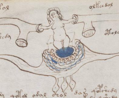 Nemora, il manoscritto Voynich di Villa Mondragone Frascati