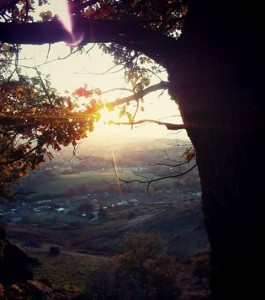 Tuscolo, fra metapaesaggio e Tao