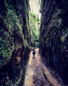 Le Vie Cave Etrusche e il Monte Artemisio