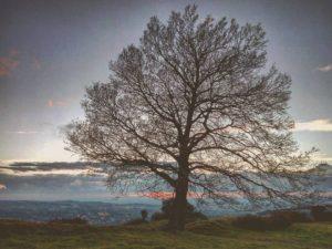 Monte Tuscolo, morte e resurrezione