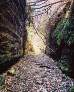 Tagliata delle Grotte Cave